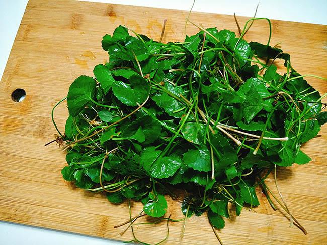 cách làm sinh tố rau má đơn giản tại nhà