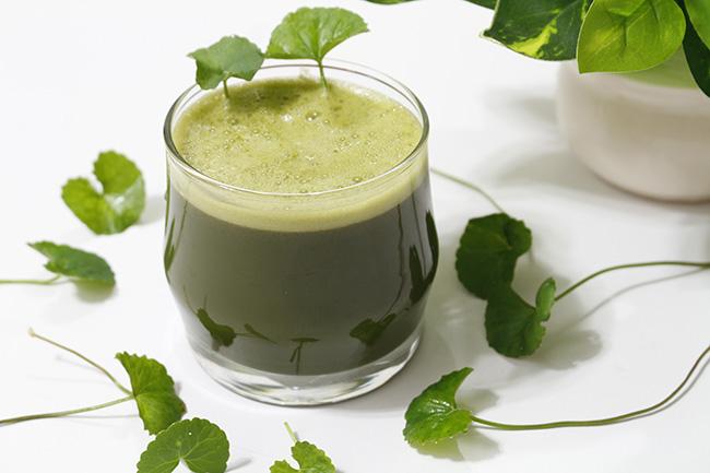 Sinh tố rau má nhiều vitamin bổ dưỡng lại rất thanh má