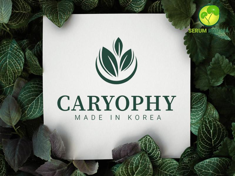 CARYOPHY Thông tin thương hiệu